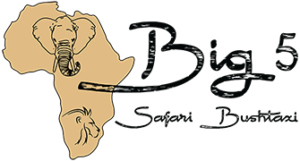 Big 5 Safari Logo